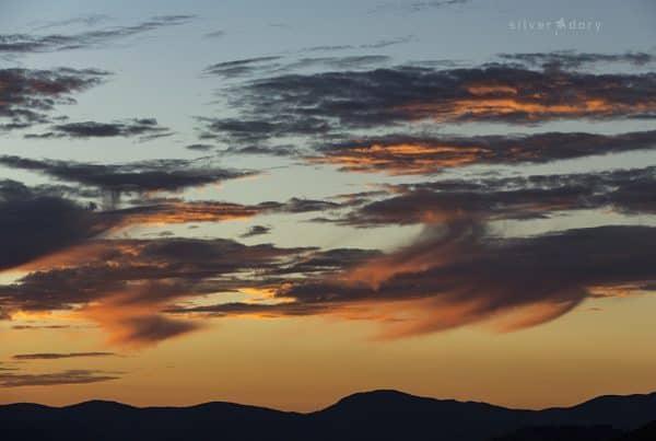 golden dusk